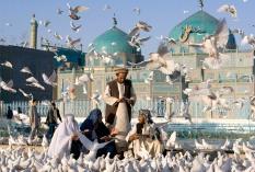 AFGHAN-Afghans feed pigeons at the Shrine of Hazrat Ali in Mazar-i-Sharif, northern Afghanistan