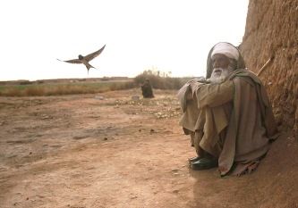 AFGHAN-An elderly Afghan man sits outside his farm house as a bird flies nearby in Marjah, in Helmand province