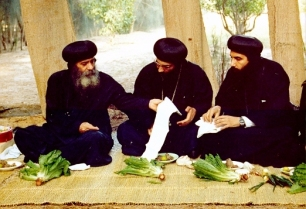 Photo.PopeShenoudaIIIOnShamElNessim